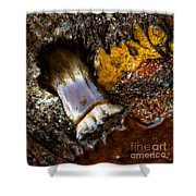 Tidal Abstract Shower Curtain