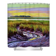 Tidal Stream Shower Curtain