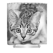 Tiddles Shower Curtain