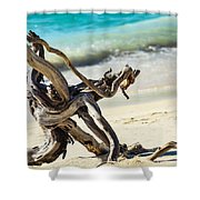 Tied In Knots Shower Curtain