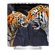 Tiger 05 Shower Curtain