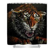 Tiger-1 Original Oil Painting Shower Curtain