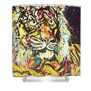 Tiger #2 Shower Curtain