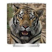Tiger Abstract Shower Curtain
