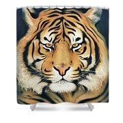 Tiger At Midnight Shower Curtain
