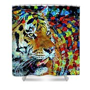 Tiger Big Colors Shower Curtain