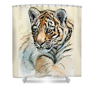 Tiger Cub Portrait 865 Shower Curtain