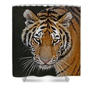 Tiger Hunting Shower Curtain