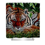 Tiger In Jungle Shower Curtain