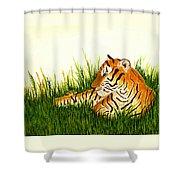 Tiger In Wait Shower Curtain