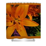Tiger Lily Bouquet Shower Curtain