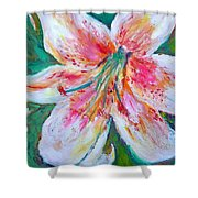 Tiger Lily Passion Shower Curtain