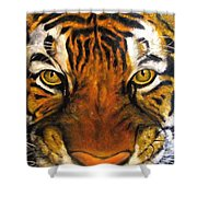 Tiger Mask  Original Oil Painting Shower Curtain