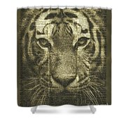 Tiger Over Dictionary Page Shower Curtain