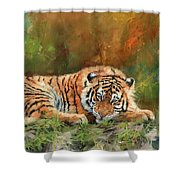 Tiger Repose Shower Curtain