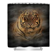 Tiger Shower Curtain by Sandy Keeton