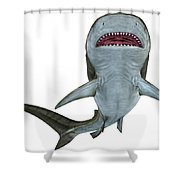 Tiger Shark Underside Shower Curtain