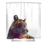 Tiger // Solace - White Background Shower Curtain by Amy Hamilton