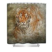 Tiger Splash Shower Curtain