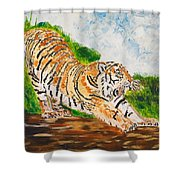 Tiger Stretching Shower Curtain