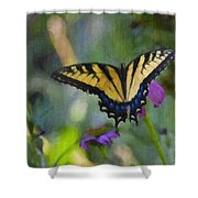 Tiger Swallowtail Painting Shower Curtain