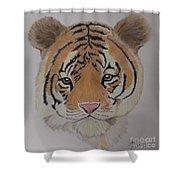 Tiger Tiger Shower Curtain
