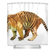 Tiger White Background Shower Curtain