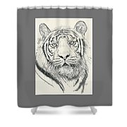 Tigerlily Shower Curtain
