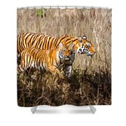 Tigers Burning Bright Shower Curtain