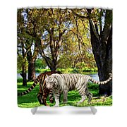 Tigers By The City Shower Curtain