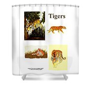 Tigers Montage Shower Curtain