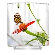 tigerwing at plus 1EV Shower Curtain