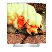 Tilly Resting Shower Curtain
