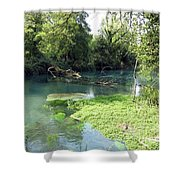 Timava's Spring II Shower Curtain