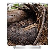 Timber Rattlesnake Shower Curtain