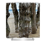 Timber Textures Lv Shower Curtain