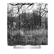 Timberland Infrared No2 Shower Curtain