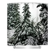 Timberline Snow Shower Curtain