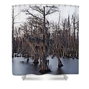 Time And Cypress Shower Curtain