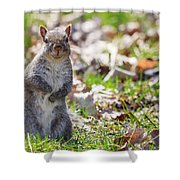 Time For Dinner? Shower Curtain