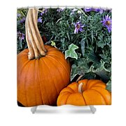Time For Pumpkins In The Flower Beds Shower Curtain