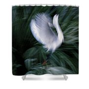 Time N Motion Shower Curtain