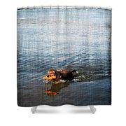 Time To Fetch Shower Curtain by Joan  Minchak