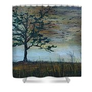 Time To Fly Away - Sold Shower Curtain