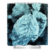 Time Travel Winter Leaves Shower Curtain