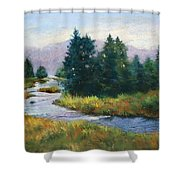 Timeless Tranquility II Shower Curtain