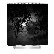 Timid Moon Shower Curtain