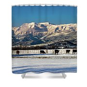 Timpanogos From The North Fields Shower Curtain