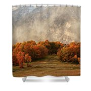Timpanogos Veiled Shower Curtain