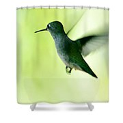 Tiny And Fast Shower Curtain
